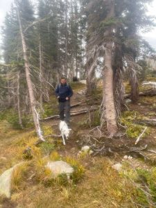 Man and Dog hiking down a mountain trail